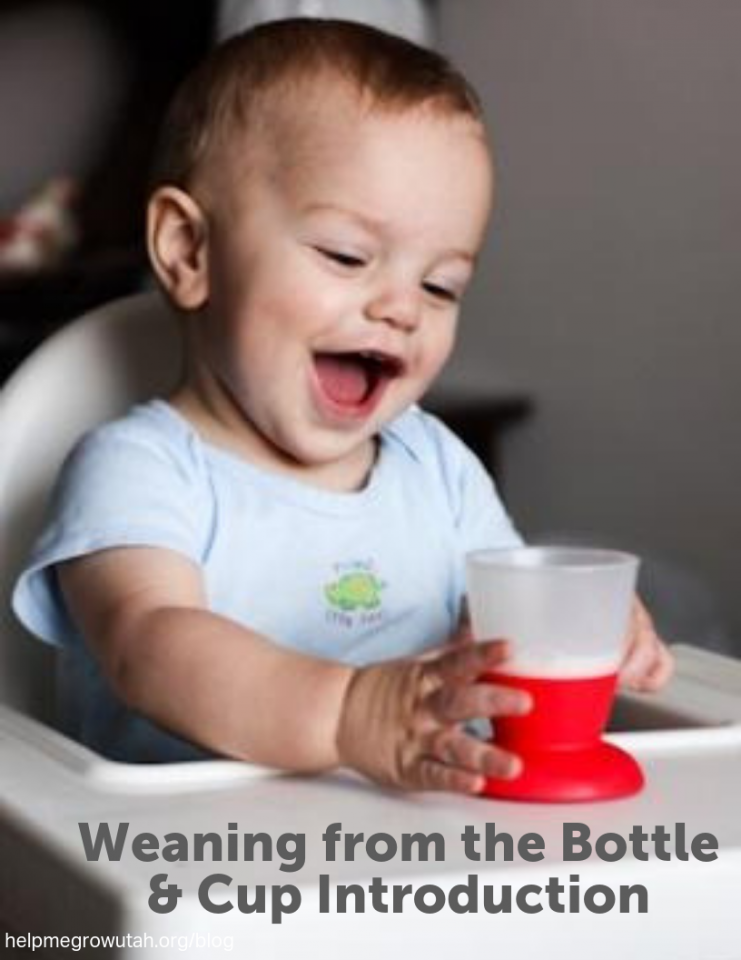 Guest Post: Weaning from the Bottle & Cup Introduction