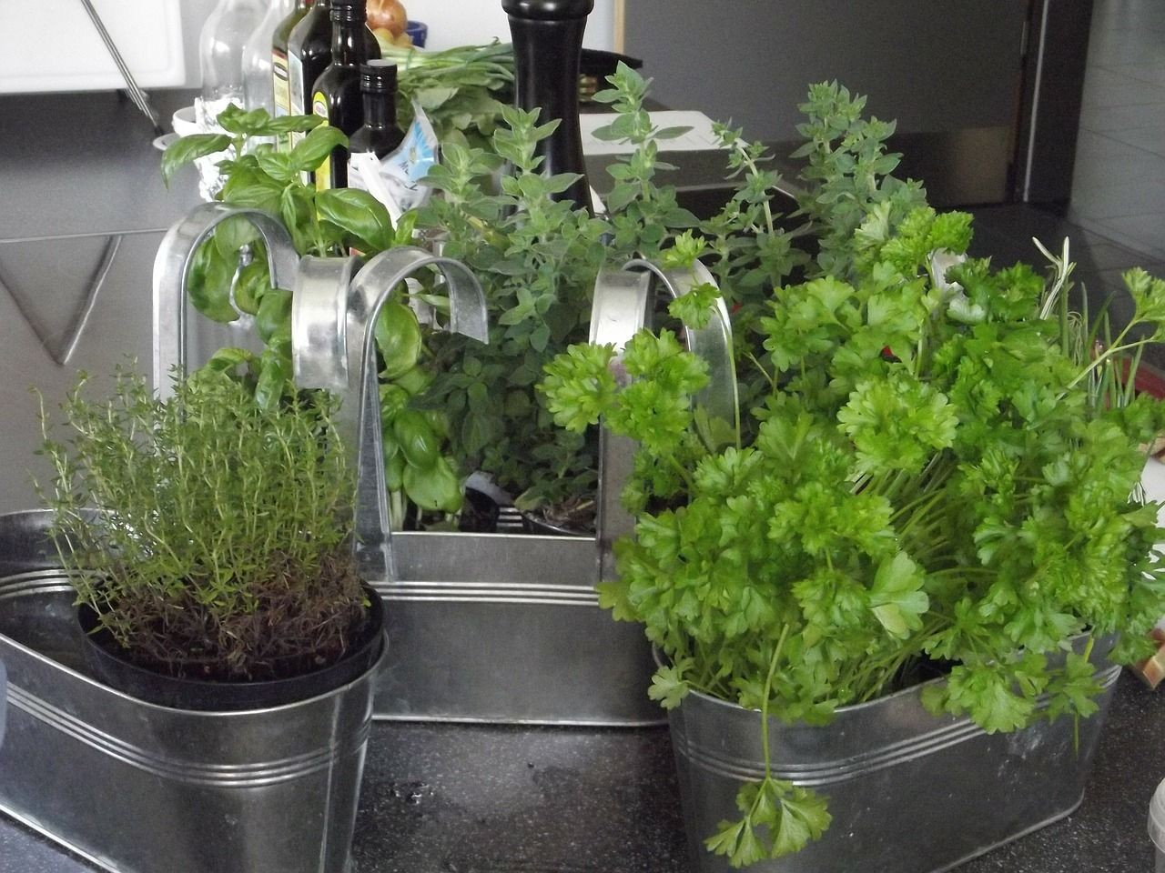 Guest Post: Kid Friendly DIY Herb Garden for Your Kitchen